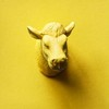 Yellow Cow Media