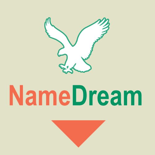 NameDream.com