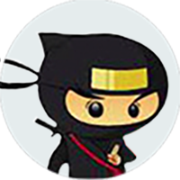 NinjaDomain