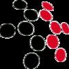 TLDnetworks.com
