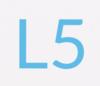 L5 Domains