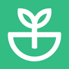 Sprout Domains
